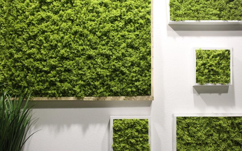 Vivere Greenery | La natura in casa